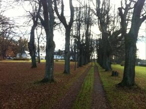 Herrgården i Kungsgården ... Tror den är till salu om någon är spekulant ..