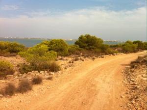 På väg genom La Mata parken...