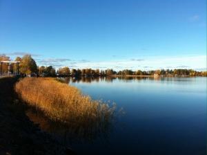 Detta måste vara en av Sveriges finaste vägavsnitt..väg 272 mellan Uppsala och Bollnäs.. Detta är vid den fällbara bron vid bångs och Storsjön