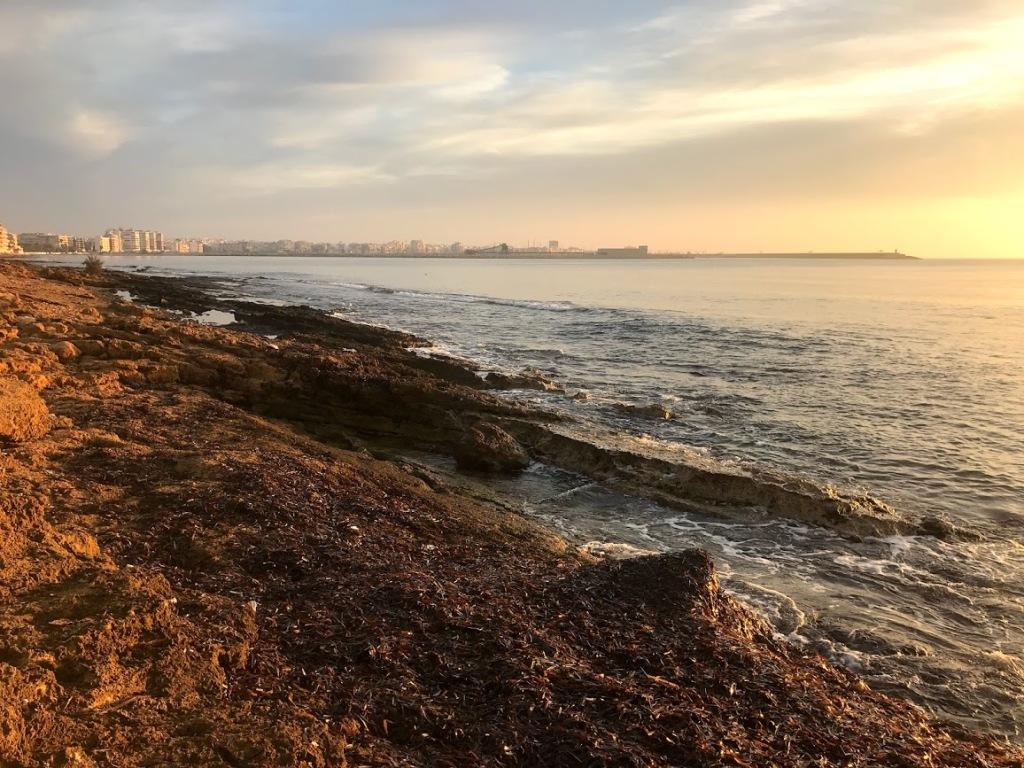 Morgon promenad med Doris, fick dra henne ner till havet för att se solen gå upp! Fantastiskt!